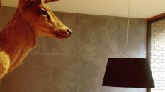 Beton efekt boya sıva